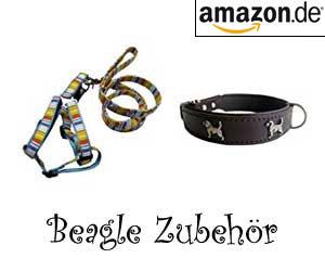 Beagle Zubehör