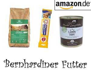 Bernhardiner Futter