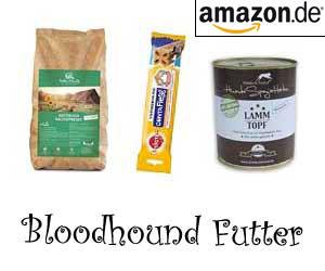 Bloodhound Futter