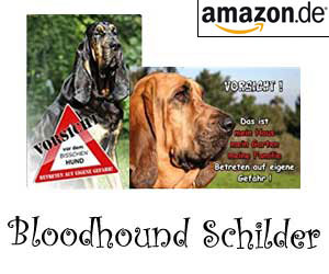 Bloodhound Schilder