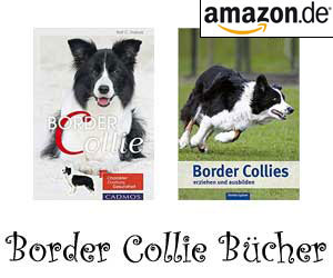 Border Collie Bücher