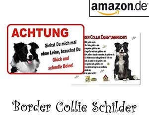 Border Collie Schilder