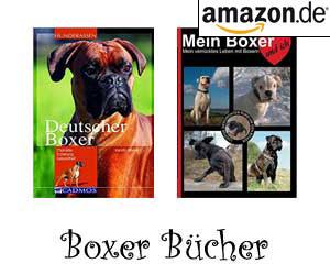 Boxer Bücher