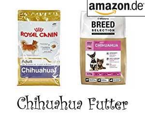 Chihuahua Futter