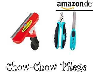 Chow-Chow Pflege