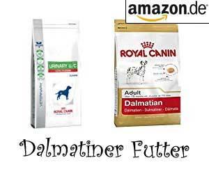 Dalmatiner Futter