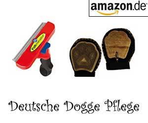 Deutsche Dogge Pflege