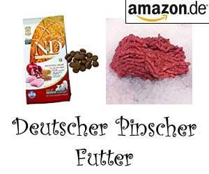 Deutscher Pinscher Futter