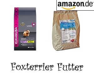 Foxterrier Futter