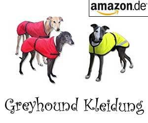 Greyhound Kleidung