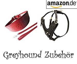 Greyhound Zubehör