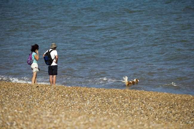 Urlaub mit Hund an der Küste Kroatiens