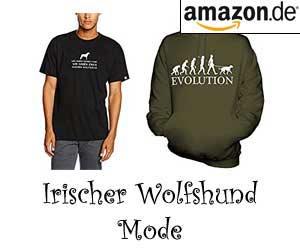 Irischer Wolfshund Mode