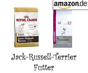 Jack-Russell-Terrier Futter