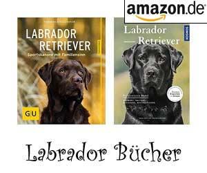 Labrador Bücher