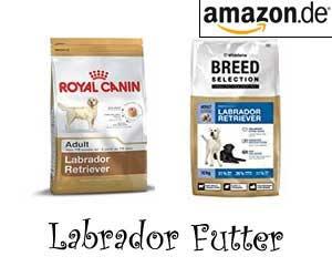 Labrador Futter