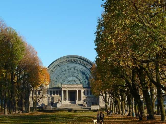 Städtereise mit Hund, Brüssel