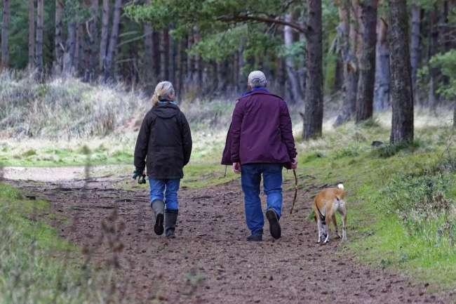 Wanderuraub mit Hund in Tschechien