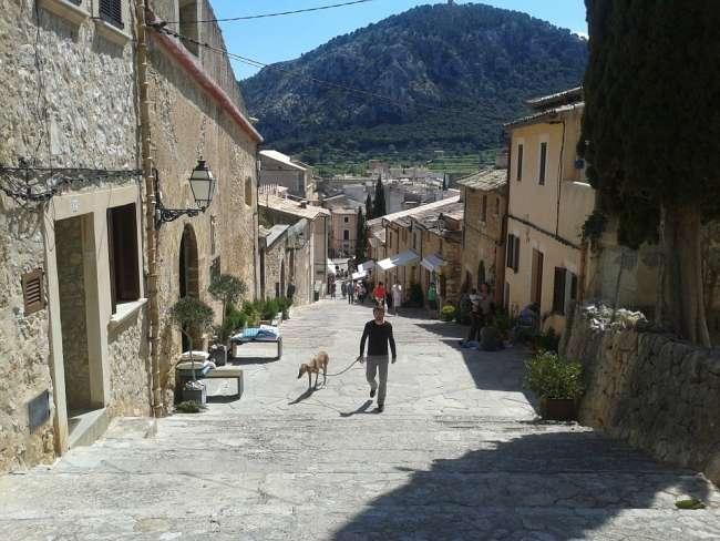 Wandern mit Hund auf Mallorca