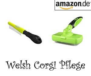 Welsh Corgi Pflege