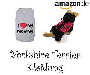 Yorkshire Terrier Kleidung