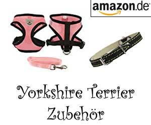 Yorkshire Terrier Zubehör